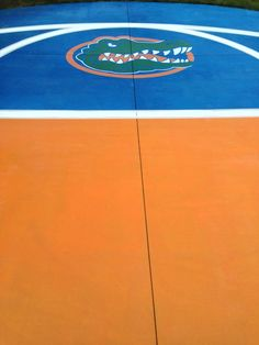 Here's another pic of more of the Gator court. It looks fantastic!!!
