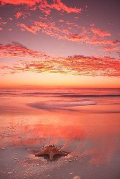 Mullaloo Beach, Australia. What a gorgeous peach, pink and purple sunset!