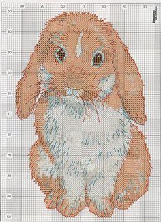 los gráficos del gato: Animales