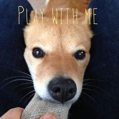 Play with me!!!!