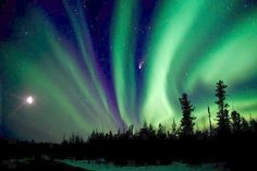 Aurora Borealis...the Yukon