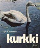 Yrjö Knuutinen - Kurkki
