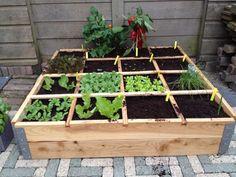 Tuinieren op de vierkante meter is echt een makkelijke en overzichtelijke en productieve manier van groente kweken. Het kost weinig ruimte! Je kunt de vierkante meter tuin vaak al kwijt op een balkon of binnenplaats.