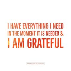 Today's Mantra: I have everything I need in the moment it is needed and I AM Grateful.