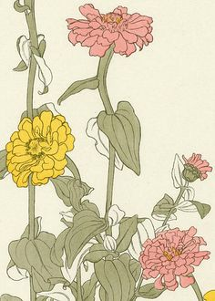 Jeannie Foord Zinnia 1901  I'd love this design painted on a wall large size