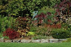 10 Ways to Landscape Your Property Lines: Mixed Borders for Privacy on Property Lines