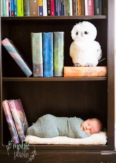 Baby on a bookshelf with Harry Potter - In-home Newborn Photography by Mobie Photo - Riverton, Utah