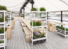 Form Us With Love creates waterfront beer garden