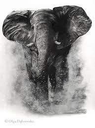 Image result for water soluble graphite art Grey Ink Tattoos, Crow Tattoos, Phoenix Tattoos, Ear Tattoos, Biro Art, Graphite Art, Elephant Tattoos, Elephant Elephant, Amazing Paintings