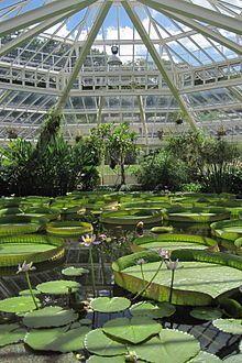 Nationaler Botanischer Garten Von Belgien Meise Be Im Fruhjahr 1 8 Belgien Botanischer Fruhjahr Garten Meise Belgien Botanischer Garten Reiseideen