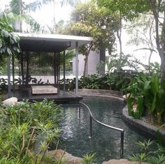 Luxury condo and cat sitter required in KL | TrustedHousesitters.com