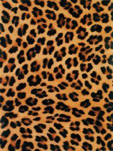 Cheetah Print Wallpaper, Lavender Tie, Incredible Edibles, Pony Hair, Leopard Pattern, Painting Techniques, Animal Print Rug, Swatch, Tie Dye