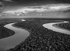 Salgado/Genesis. Amazonie. Ces méandres appartiennent à la même rivière. Le navigateur pourra s'armer de patience.