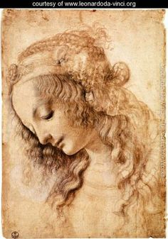 Woman's Head by Leonardo Da Vinci