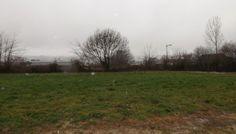 Terrain à batir : Manche-Avranches-Terrain à bâtir à PONTS dans lotissement calme