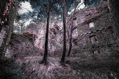 #colorinfrared #infraredphotography #infraredfilm #aerochrome #hibiscus #bigsur #delagram #infrared #nature #wheat #lomopurple #memorylane #photooftheday #farmlife #farm #naturephotography #sundaymorning #earthday #outside #tgif #infriday #ir #landscape #oc #orangecountystill #myinfrared #avatarfc #falsecolor #nikoncroatia #visitrijeka #calocals - posted by Marko Šteka Šteković https://www.instagram.com/marko_stekovic_msshoot - See more of Big Sur, CA at http://bigsurlocals.com