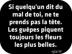 Citations option bonheur: Citation sur les critiques négatives Plus The Words, Cool Words, Words Quotes, Me Quotes, Funny Quotes, Sayings, Positive Mind, Positive Attitude, Quote Citation