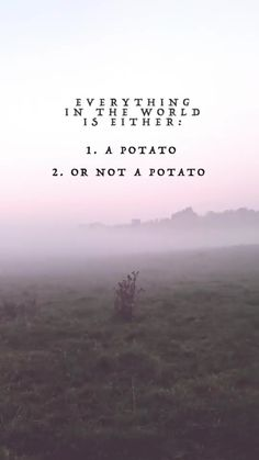 Everything in this world is either a potato or not a potato