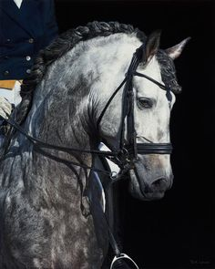 """""""A Regal Repose"""" by artist Bruce Lawes is the first-place winner in our annual Artistic Excellence competition. Pretty Horses, Horse Love, Beautiful Horses, Andalusian Horse, Friesian Horse, Dressage, Dapple Grey Horses, Horse Braiding, Horse Artwork"""