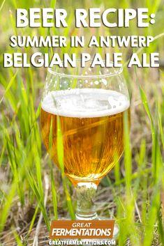 Summer in Antwerp Belgian Pale Ale Recipe :: Great Fermentations Beer Brewing Kits, Brewing Recipes, Homebrew Recipes, Beer Recipes, Punch Recipes, Belgian Pale Ale, Belgian Beer, Ale Hop, Homemade Ginger Ale