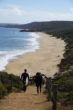 Best Day Trips from Melbourne – Nat Wanderlust Western Australia, Australia Travel, Australia Beach, Redwood Forest, Water Activities, Great Barrier Reef, Lake View, Day Trips, Travel Photos