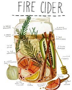 Fire Cider is an increasingly poplar herbal folk remedy that is a pleasant (if you like particularly hot foods) and easy way to boost natural health processes, stimulate digestion, warmed up on the on. Natural Medicine, Herbal Medicine, Holistic Medicine, Kitchen Witch, Herbal Tea, Book Of Shadows, Food Illustrations, Tea Recipes, Herbal Remedies