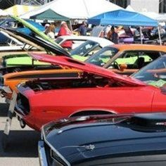 So you want to host a car show? I can tell your first hand that hosting a car show can be very fun and rewarding. However, to be successful there are a few things you will need to know about hosting a car show.  Here you will find everything you...