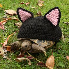 Tortoise Cozy - Black Cat