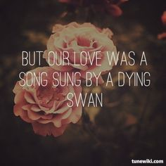 But our love was a song sung by a dying swan. Oblivion M83 lyrics