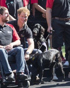 Prince Harry attends a photocall ahead of the Invictus Games at Potters Field Park on 13.08.2014 in London, England