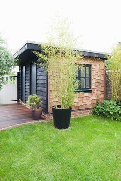 Flat Roof Garden Shed Office Timber Cladding Shed Office, Garden Office, Shed Conversion Ideas, Shed Of The Year, Home And Garden Store, Shed Kits, Plasma, Timber Cladding, She Sheds