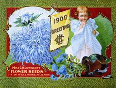 Carrie Lippincott's 1900 seed catalogue back cover