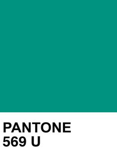 PANTONE SOLID UNCOATED