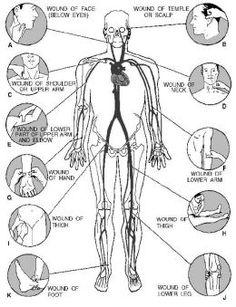 First Aid Basics: Bleeding