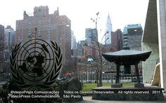 Subcomitê de Prevenção Contra a Tortura das Nações Unidas reelege Maria Margarida Pressburger  -  IMG_3752