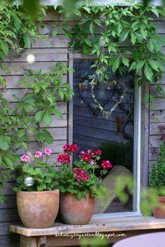 Ein Schweizer Garten: Sag niemals nie, wie ich zur Geranienliebe kam und warum man mich Patina nennt.