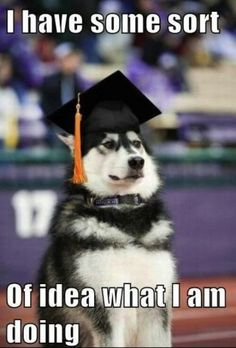 This is going to be me in and after grad school.