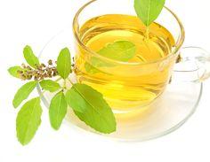 Conheça os benefícios e propriedades do poderoso chá de manjericão. E aprenda a prepara-lo.