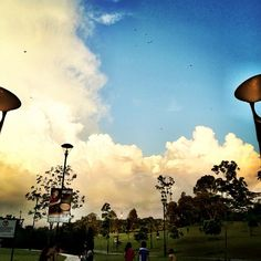 Kites flying #woodlands #waterfront #iphone4s #cloud #clouds #kites #flying #park #park #jetty #causeway #sg #singapore #sky #nature #coast #coastline #causeway #marsiling #admiralty #guosheng #guoshengz