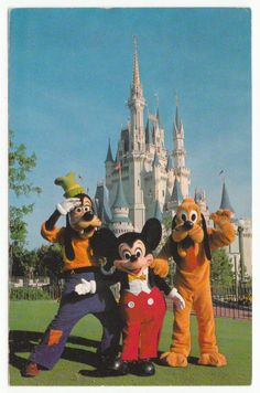 Postcards - United States # 103 - Walt Disney World, Florida