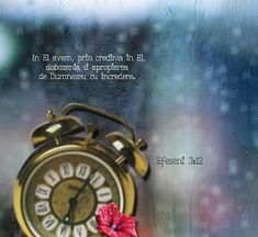 Versete de Aur : 01.11.2013 - 01.12.2013 Aur, Bling, Jewel