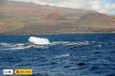 Erupción submarina Canarias 24