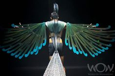 HARPAGORNIS, Jan Ubels, Auckland. Air New Zealand South Pacific Section. 2012 WOW Awards Show World Of Wearable Art, Wow World, Bird Costume, Air New Zealand, Design Competitions, South Pacific, Wow Products, Costume Ideas, Costumes