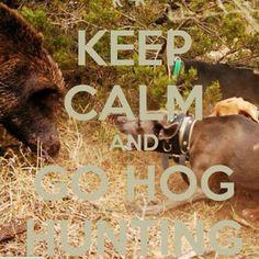Keep Calm & Go Hog Hunting