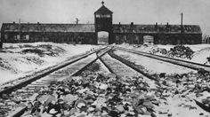 Etwa eine Million Juden fielen allein hier dem Rassenwahn der Nazis zum Opfer. Im Januar 1945 befreite die Rote Armee das KZ Auschwitz. Die SS dokumentierte durch Fotos teilweise selbst die Zustände in dem Lager und an den anderen Orten des KZ-Systems.