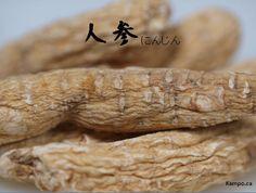 ren shen - gingseng root: http://kampo.ca/herbs-formulas/herbs/ninjin/