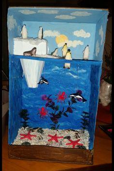 Arctic Habitat Diorama 2nd grade project