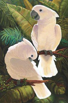Umbrella Cockatoos - Sandra Reardon