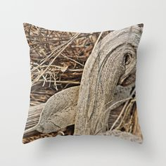 Buy Still life in palm bark by Christine baessler as a high quality Throw Pillow. Worldwide shipping available at Society6.com. Just one of millions of products available.
