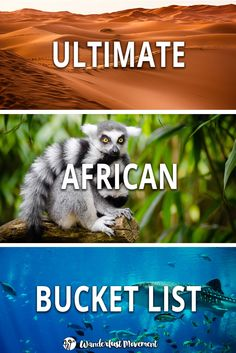 Need some inspiration for your trip to Africa? Here are some of the best places to visit in Africa and the top things to do for every kind of traveller!| 100 of the Best Places to Visit in Africa | Wanderlust Movement